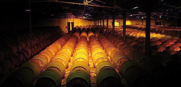 cognac charentais