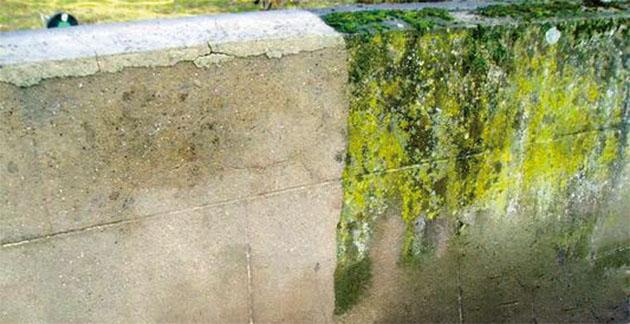 Comment Nettoyer Des Taches De Moisissures Sur Un Mur comment nettoyer des murs, façades et terrasses ? - ré à la hune