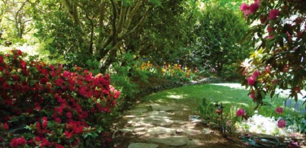 Dessine Moi Un Beau Jardin ! Jardin Paysager