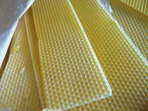 Miel abeille de Ré