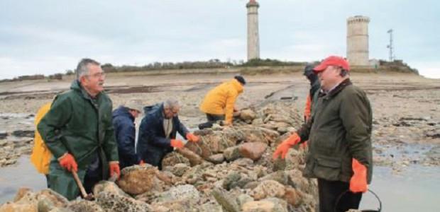 Réparation des écluses à poissons de l'île de Ré