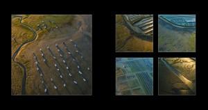 Photos aériennes de l'ile de Ré. (c) Sylvie Curty