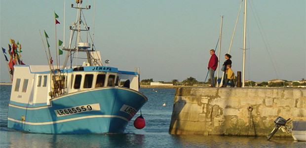 Disparition de l'activité pêche traditionnelle de l'île de Ré ?