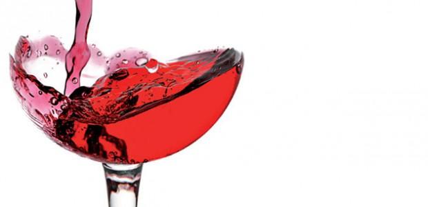 Salon du goût et du vin octobre novcembre 2015 au Bois-Plage