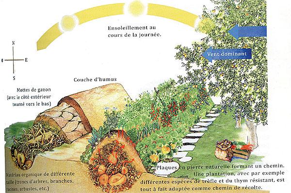 Permaculture : Schéma d'une butte-sandwich.
