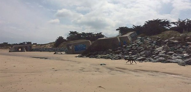 Les blockhaus de la Solitude à St Clément des Baleines. L'AVSCB est une force de proposition pour Saint-Clément