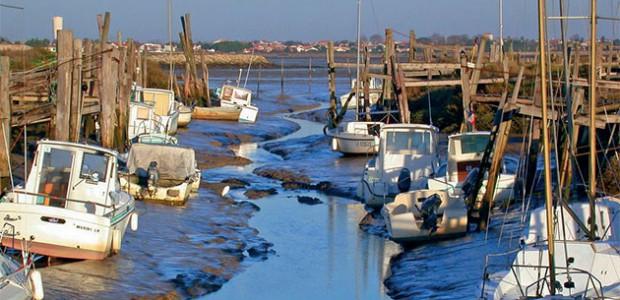 Le chenal du Goisil, envasé, à marée basse. Amigo, les amis du Goisil s'inquiète pour le site
