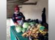 Des légumes d'exception à l'année made in Ré