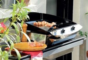 Barbecues, accessoires de jardin : pépinières Guilbon Bricololoisirs à Ars (île de Ré)