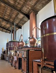 Visite de la distillerie lors des Régalades