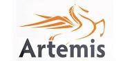 Artemis location touristique