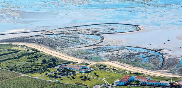 vue aérienne des écluses à poisson de Ste Marie de Ré