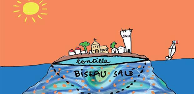 dessin de la lentille d'eau de Loix - Ile de Ré