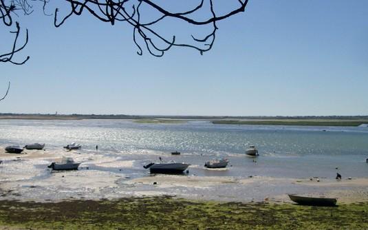 La qualité des eaux littorales en question