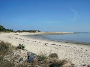 photo de la plage du Groin à Loix - Ile de Ré