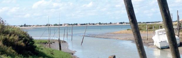 AMIGO et site du Goisil : une AG tournée vers l'avenir