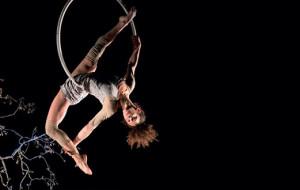 Théâtre, musique, danse, festivals : La Coursive nous ravit cette saison encore