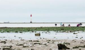 Au pied du Phare de Chauveau la pêche est une tradition.