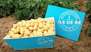 Une caisse de pommes de terre primeur AOP (© UNIRE)