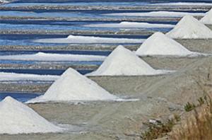 La récolte du sel dans le marais (© François Blanchard)