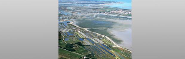 L'attractivité de l'île de Ré menacée par les multiples pressions qu'elle subit ?