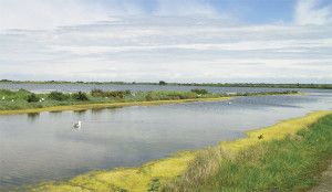 La CdC a déjà investi 2,5 M€ dans les marais