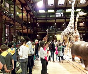 La Grande Galerie de l'Evolution du Muséum d'Histoire Naturelle