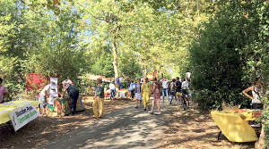 Protégées du soleil par les grands arbres, les associations accueillent le public (© CdC Ile de Ré)