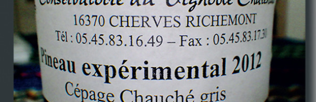De la treille des Pelletier au Chauché Gris