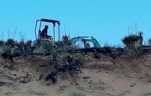 L'arrachage des Yuccas sur les dunes en débat