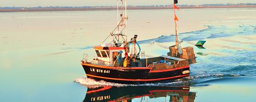 La Poissonnerie La Fille du Pêcheur : magasin, marchés et livraison