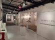 Visus Gallery à Saint Martin : modernisme et artistes émergents