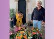 Les fleurs des Salières : belles des champs