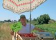 Jean-Baptiste Lacombe : maraîcher, paysagiste et citoyen engagé