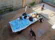Protection animale : une importante avancée