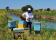 Village artisanal de Loix : un bilan de santé plutôt positif