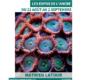 Mathieu Latour : formes et couleurs du monde sous-marin